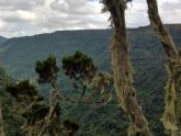 Aberdare-National-Park_Maciej-Sudra_6
