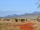 Amboseli-NP_Maciej-Sudra_9