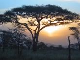 Camping-Adventure-Kenya_Alexander_2