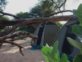 safari-camping-gallery-2-