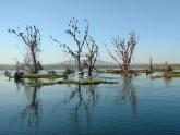 Lake-Naivasha-NP_Maciej-Sudra_6