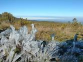 Mount-Kenya_Maciej-Sudra_34