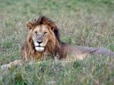 Masai-Mara-GR_Maciej-Sudra_136
